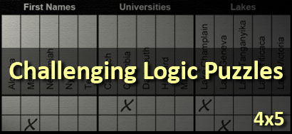 Challenging 4x5 Logic Puzzles